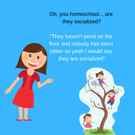 Oh, you homeschool... are they socialized_ _They haven't peed on the floor and nobody has been bitten so yeah they are socialized_ (1)